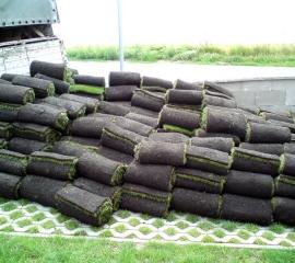Travní koberec pro plochu 180m2