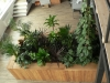 05-oddeleni_prostoru_zivymi_rostlinami