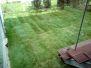 Pokládka travního koberce - Košíře