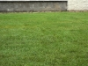 11-travni_koberec