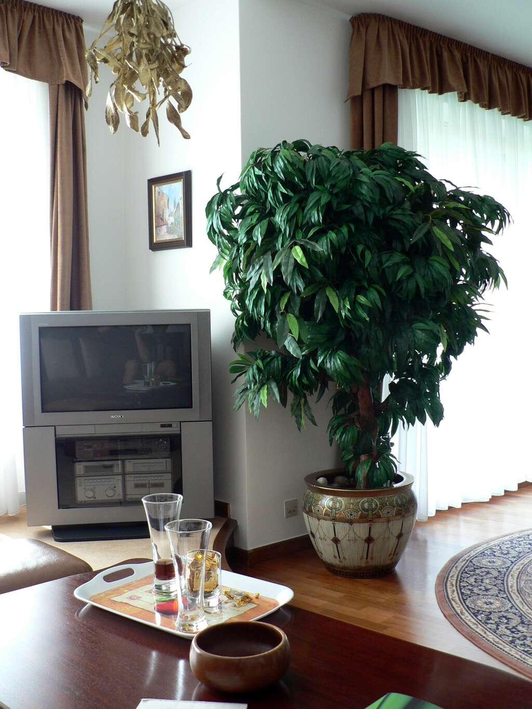 umělý strom.jpg