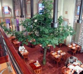 strom02.jpg