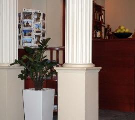 umělý zamioculcas v hotelu.jpg